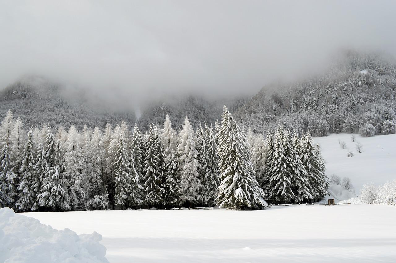 winter-1055467_1280